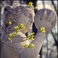 Весна :: Цветков Виктор Васильевич
