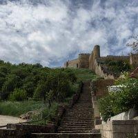 Дербент  древняя крепость :: Елена Маковоз