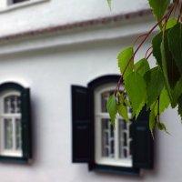Художественно-мемориальный музей И.Е.Репина :: Роман Кривеженко