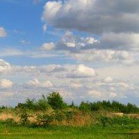 Вереница облаков :: Андрей Снегерёв