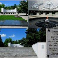 Мемориал у Вечного огня :: Нина Бутко