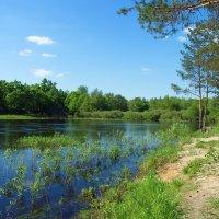 Май прощается с весеннею рекой... :: Лесо-Вед (Баранов)