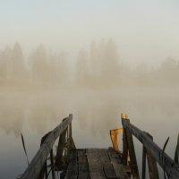 утро на озере :: Владимир Федоров