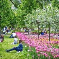 Так выглядит долгожданная  Весна... :: Лара ***