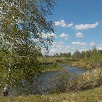 Майский пейзаж :: Ольга