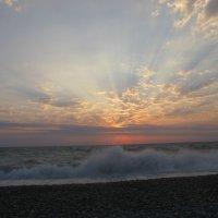 Чёрное море. Абхазия :: Дина Дробина