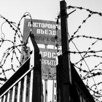 Врата :: Владимир Голиков
