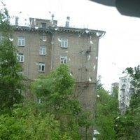 За окном стало слишком светло...Упал старый тополь... :: Татьяна Юрасова