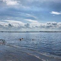 Ранние купальщики. Начало мая. :: Anatol Livtsov