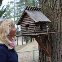 Птичий дом :: Мария Шевалдина