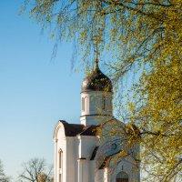 Весенние мотивы :: Alexander Petrukhin