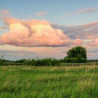 Облако на закате :: Юрий Стародубцев