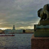 Тучи над вольной Невой... :: Sergey Gordoff