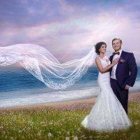 Свадебный фотоарт :: Лариса