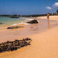 Пляжи Шри-Ланки..... :: Андрей Потапов