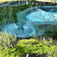 Фрагмент гейзерного озера. Алтай. :: Елена Савчук