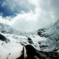 Цейский ледник! :: Надежда