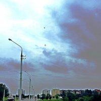 отважные парашютисты.. :: Vladimir Semenchukov