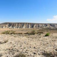 пустыня Негев :: Boris V. T.