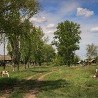 Вот моя деревня :: Сергей Перфилов