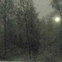 10 мая 2017г. Здравствуй, зима! :: Наталья Иль