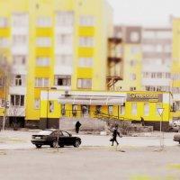 жизнь в жёлтом цвете :: Олег Губаревич