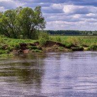 Берег реки Клязьмы :: Андрей Дворников