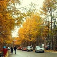 Осень :: Анна Приходько