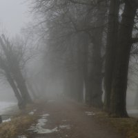 Туманный пленэр..... :: Юрий Цыплятников