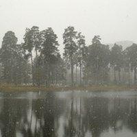 Весенний снег :: Жанна Литуева