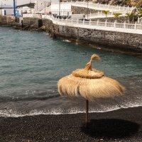 Пляж :: saratin sergey