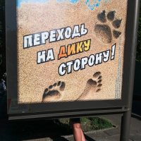 *** :: Елена Николаева