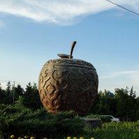 Алматинское яблоко :: Дарья Симонова