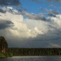 Суровое лето :: Alla Swan
