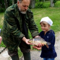 Поймали карпа.. :: Антонина Гугаева