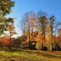 Волшебство осеннего заката... :: Sergey Gordoff