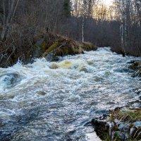 Карельские реки :: Владимир Лазарев