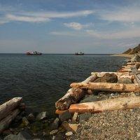 На берегу весеннего Байкала... :: Александр Попов