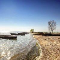 На берегу Дуная... :: Вахтанг Хантадзе
