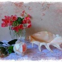 Бегония и ракушка :: Nina Yudicheva