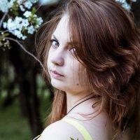 Вишневый сад 2 :: Mariya Zazerkalnaya