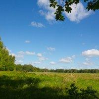 Солнечное лето :: Роман Царев
