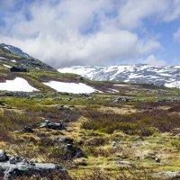 Суровая природа Норвегии... :: Cергей Павлович