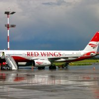 RED WINGS :: vg154