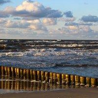 О, волны, вы в море всегда на просторе, А берег увидели, кончилась жизнь. :: Юрий. Шмаков