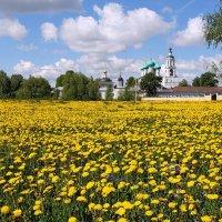 Утро возле Толгского монастыря :: Николай Белавин