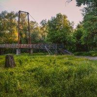 старый парк :: Алина Гриб