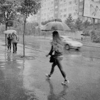 Летний дождь :: Nina Streapan