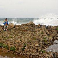 О морских камушках, раковинах и Океане... :: Кай-8 (Ярослав) Забелин
