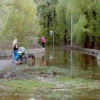Паводок :: Сергей Тарабара